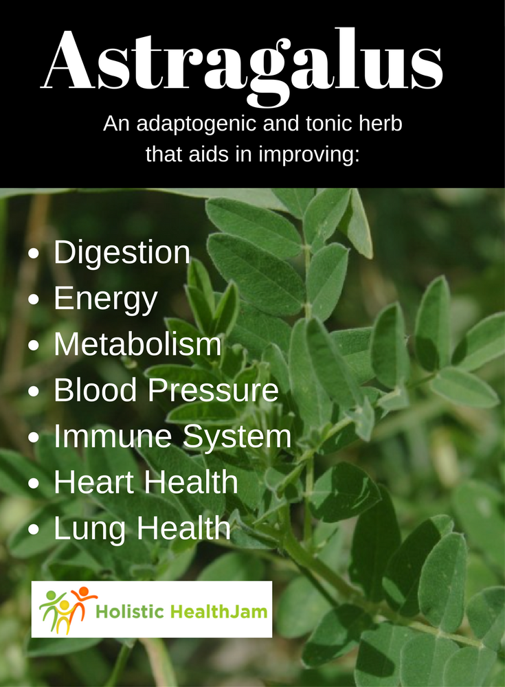 Astragalus - An adaptogenic and tonic herb that aids in: